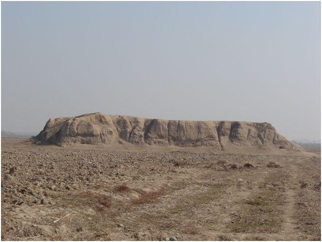 تپه ده مویز باغستان تهران