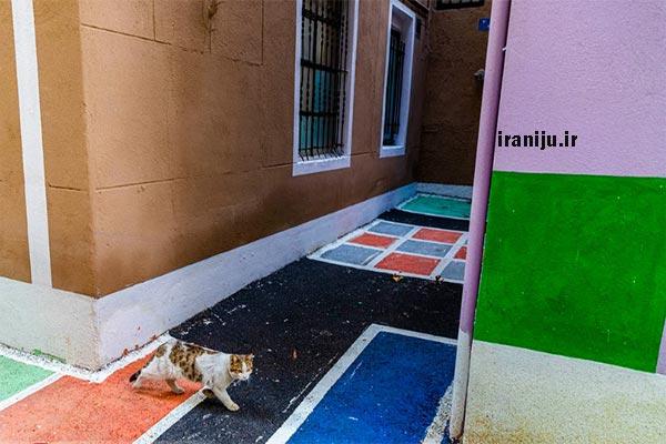 کوچه های محله شهید دستغیب تهران