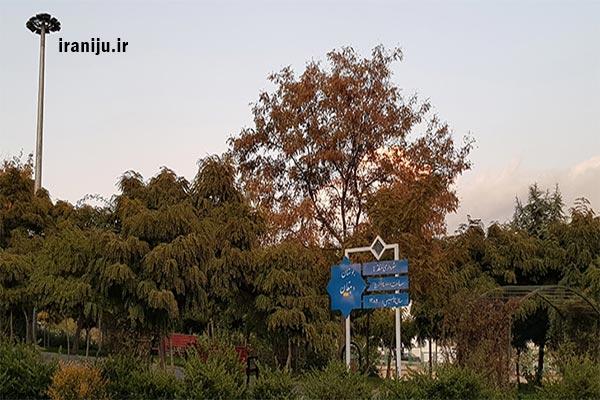 بوستان دهقان در مجیدیه