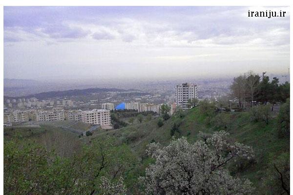 فضای سبز شهرک شهید محلاتی تهران